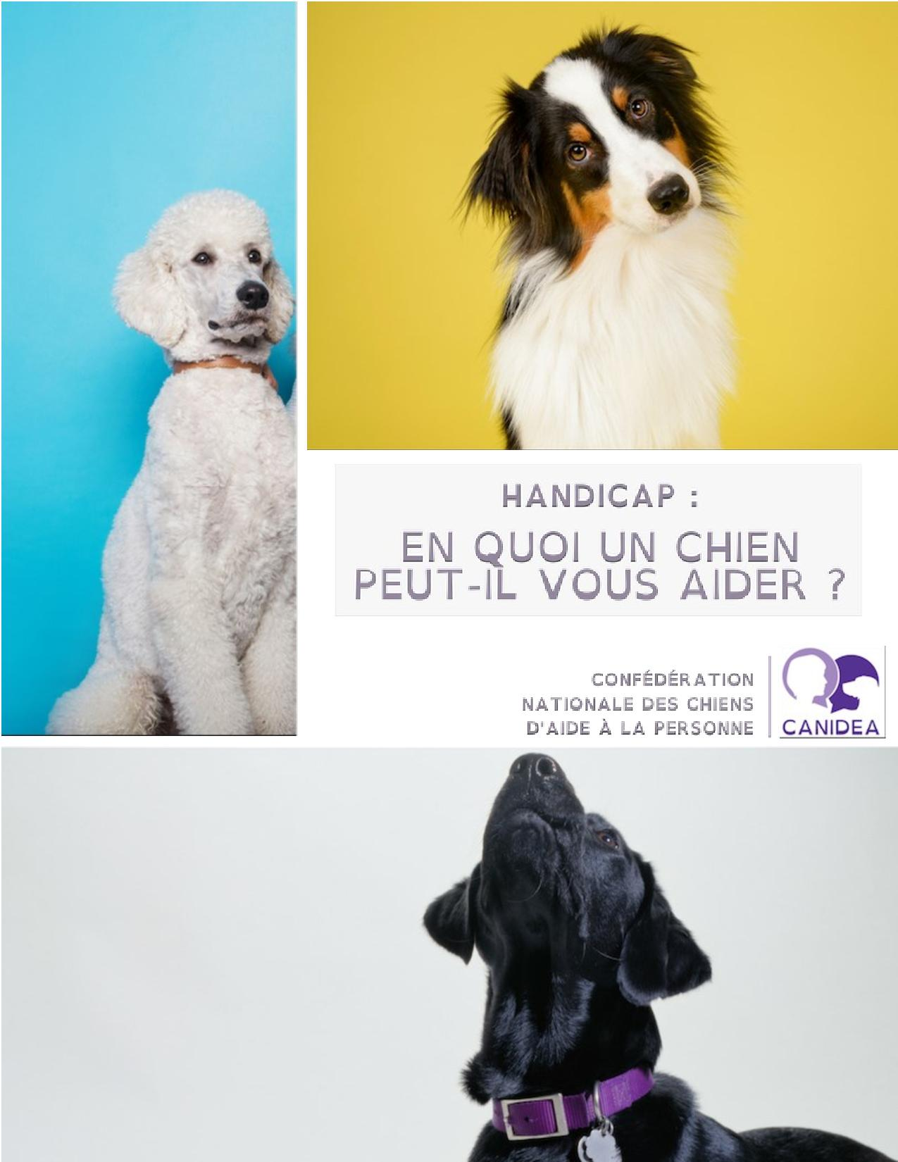 CANIDEA -Brochure chiens guides-assistance-page-001
