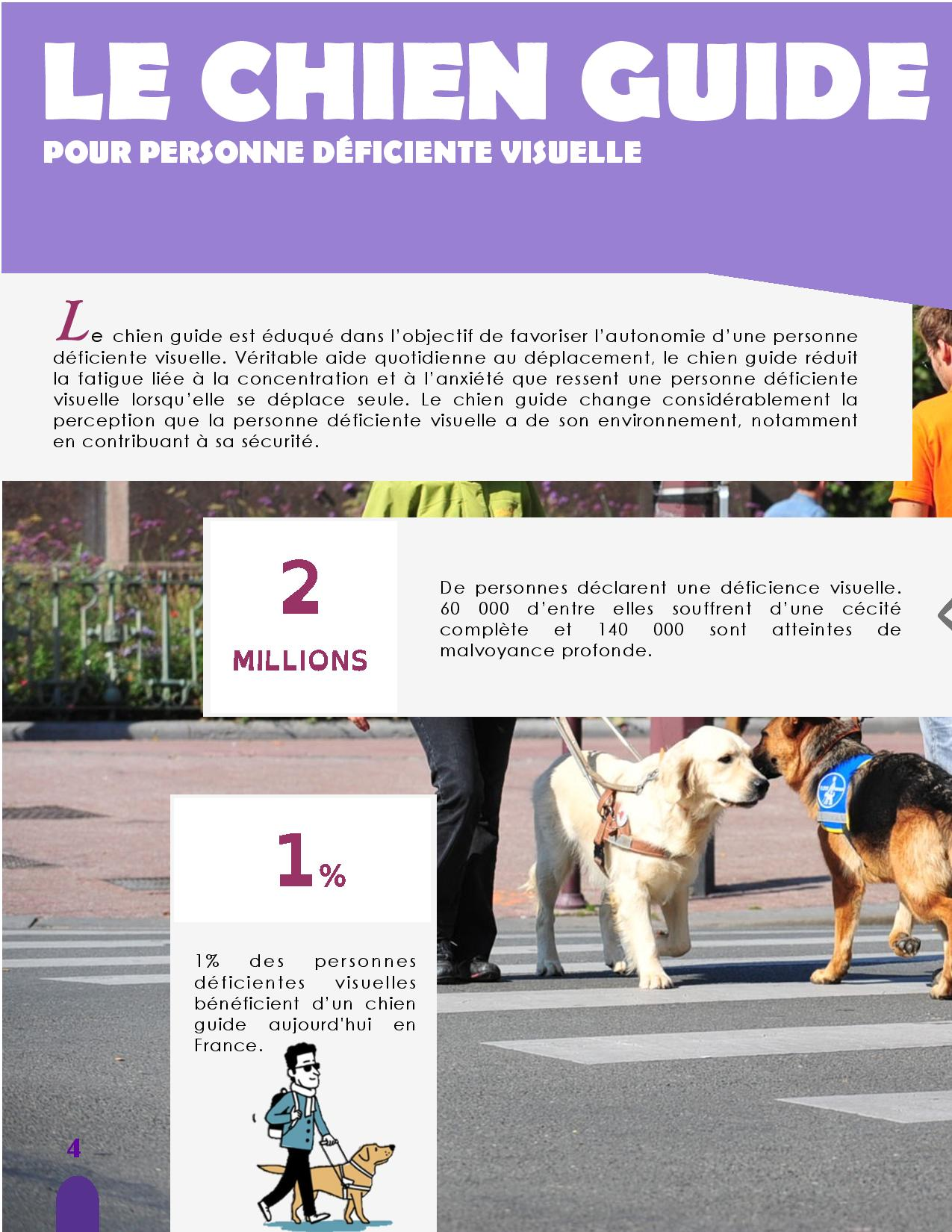 CANIDEA -Brochure chiens guides-assistance-page-004