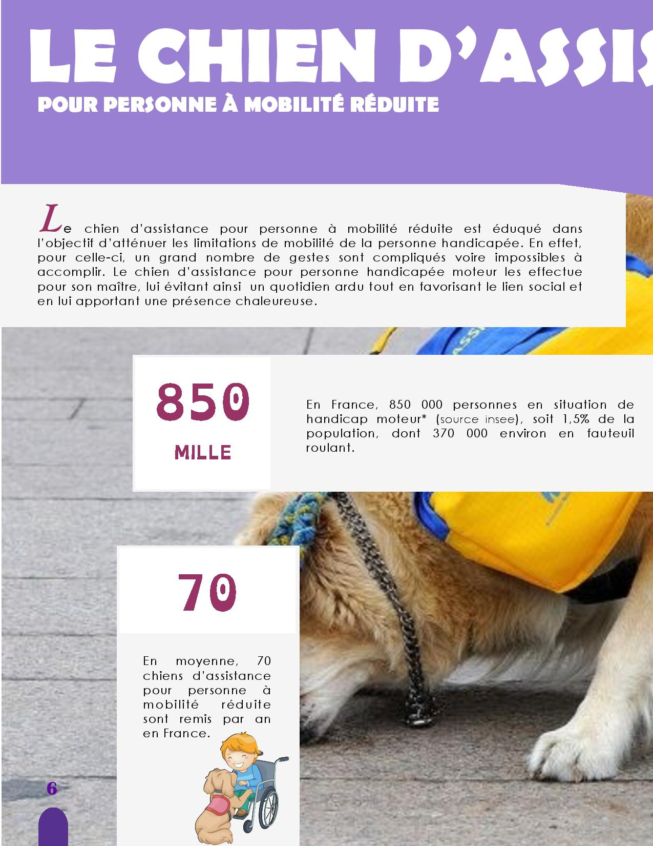 CANIDEA -Brochure chiens guides-assistance-page-006
