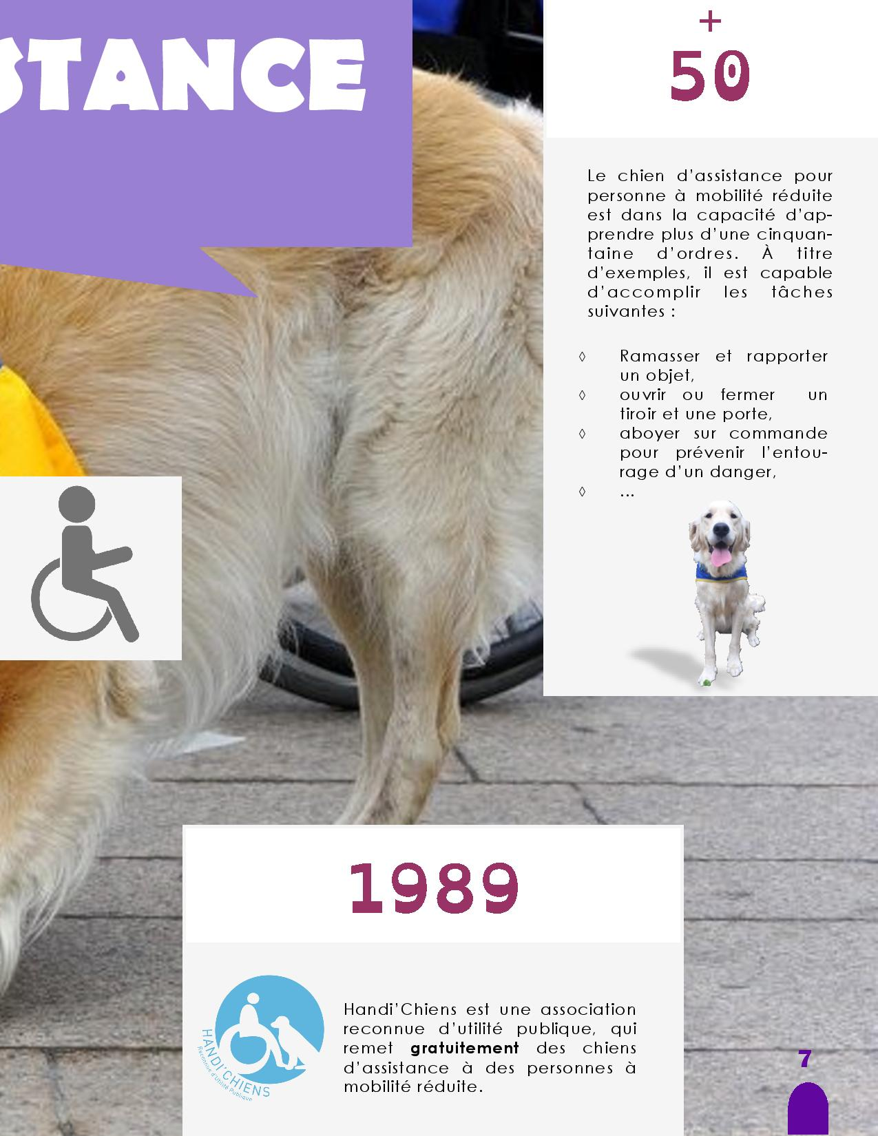 CANIDEA -Brochure chiens guides-assistance-page-007