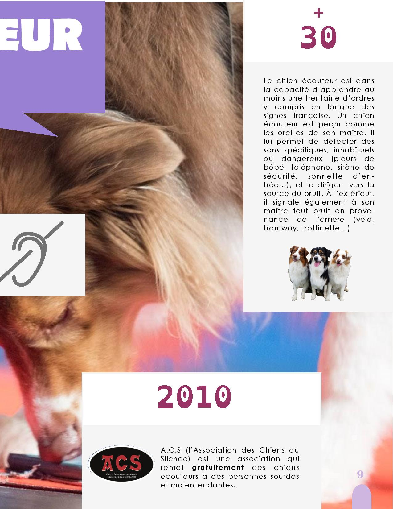 CANIDEA -Brochure chiens guides-assistance-page-009
