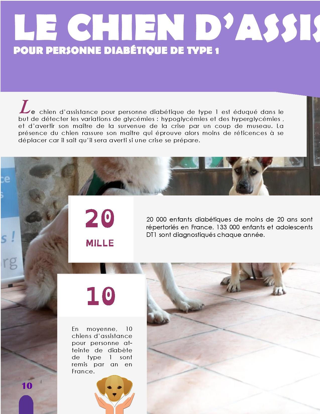 CANIDEA -Brochure chiens guides-assistance-page-010