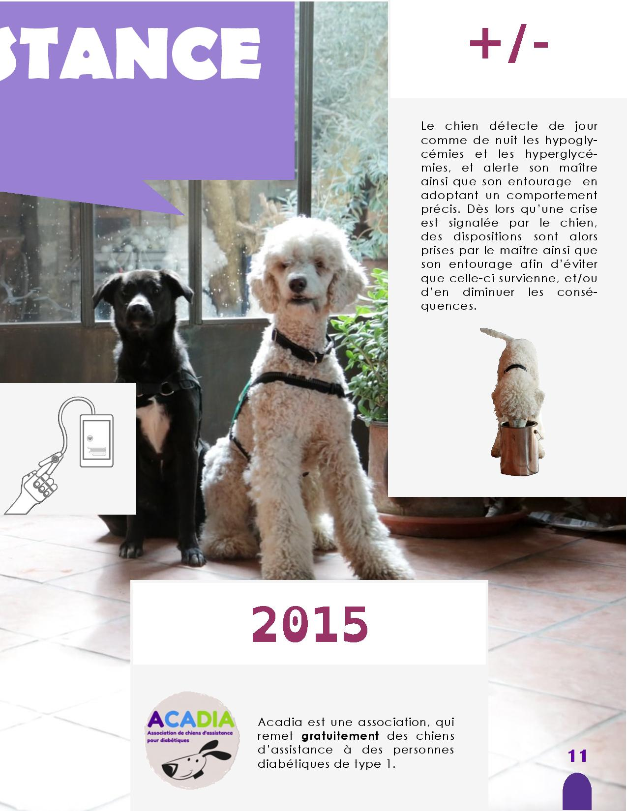 CANIDEA -Brochure chiens guides-assistance-page-011