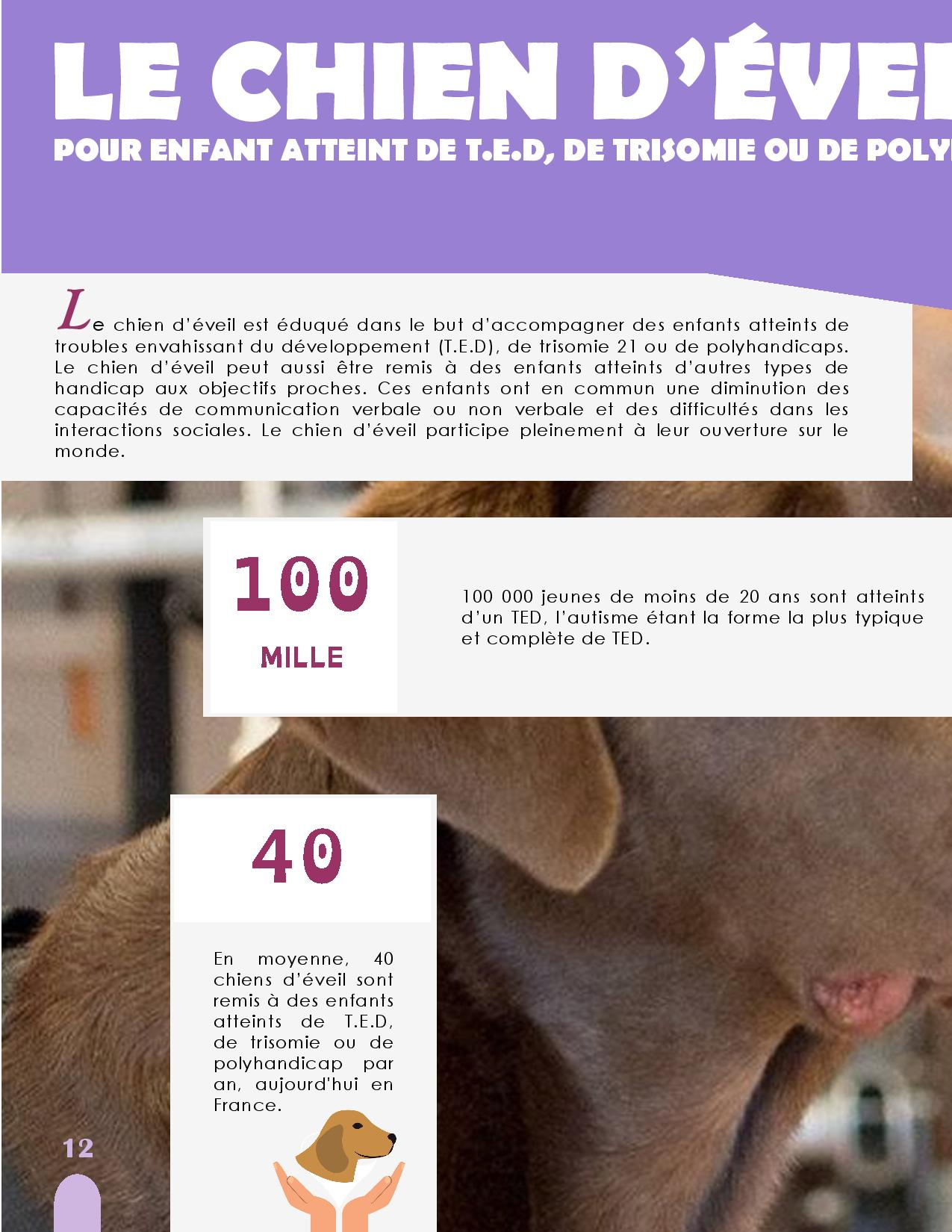 CANIDEA -Brochure chiens guides-assistance-page-012