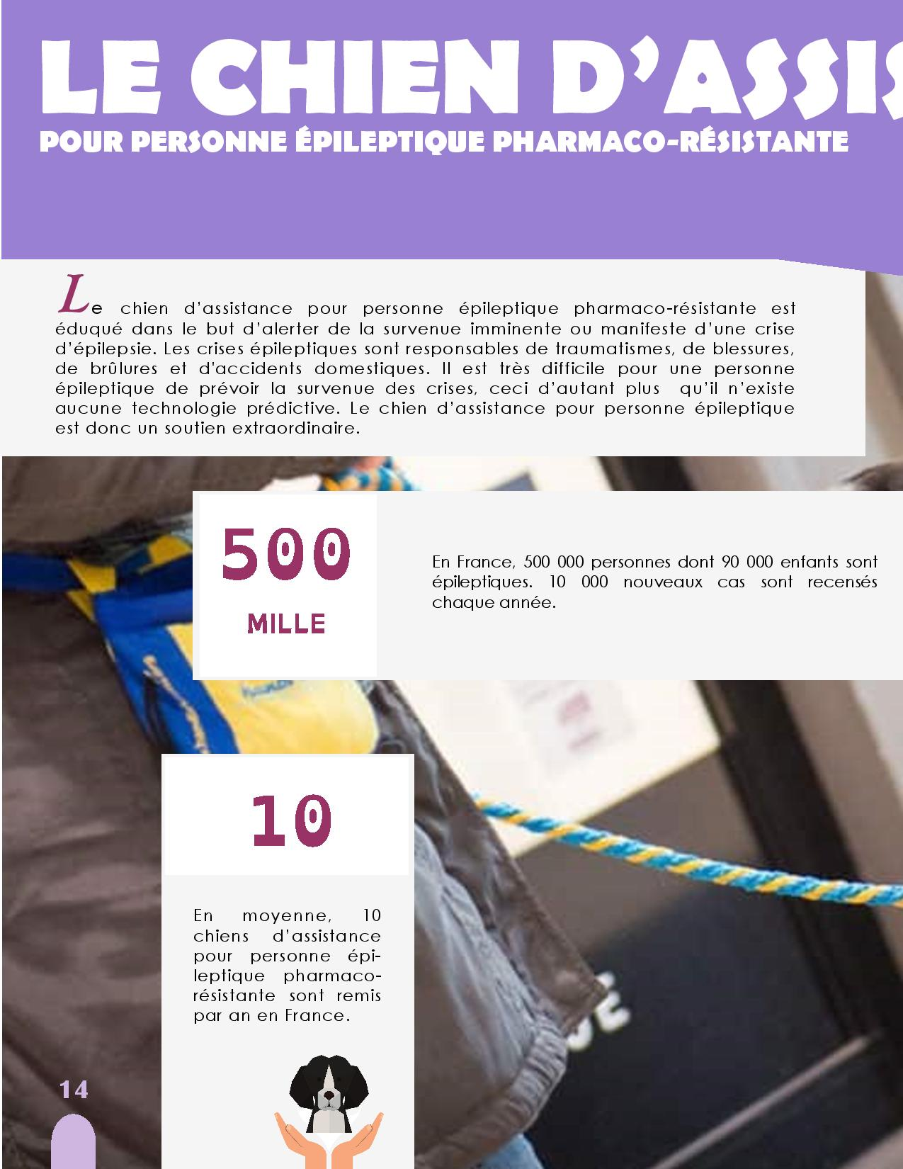 CANIDEA -Brochure chiens guides-assistance-page-014