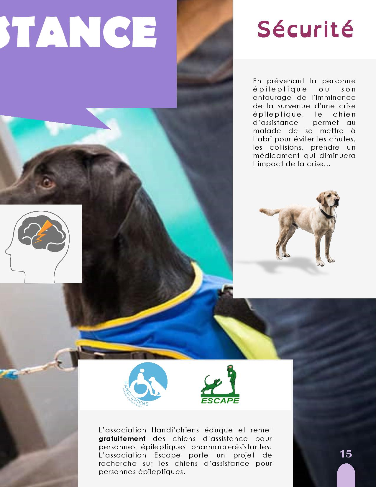 CANIDEA -Brochure chiens guides-assistance-page-015