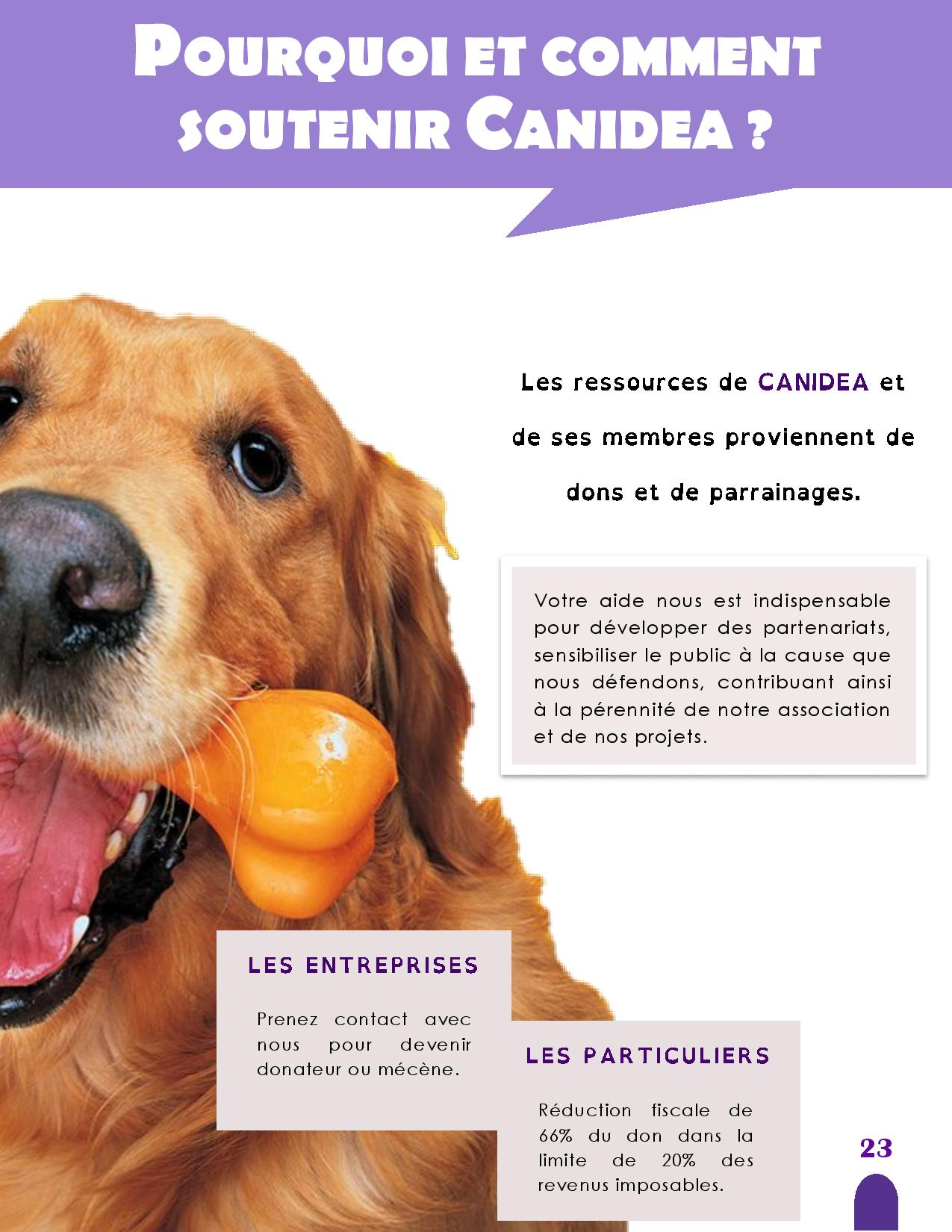 CANIDEA -Brochure chiens guides-assistance-page-023
