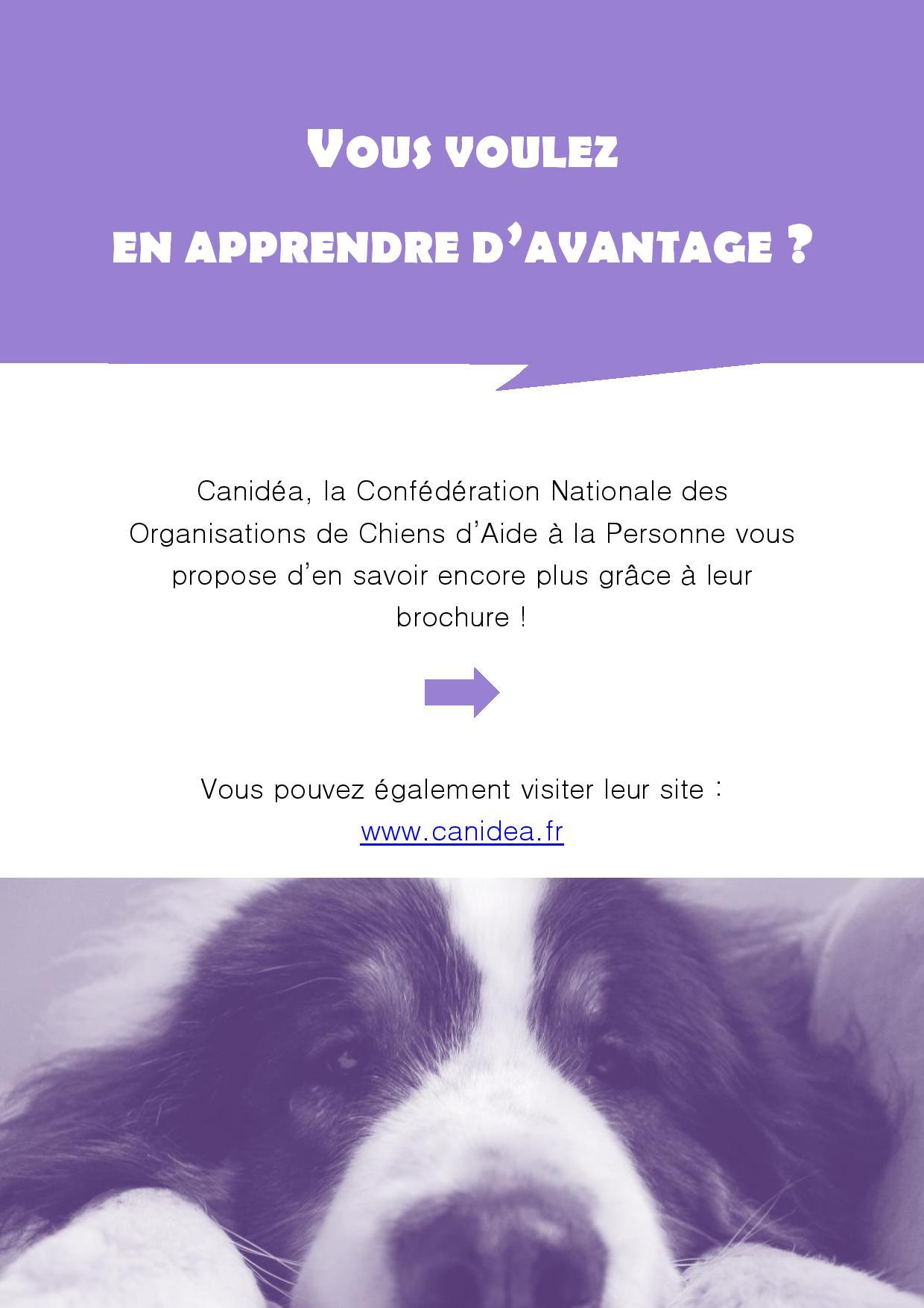 canidea - en apprendre plus sur les chiens guide et d assistance-page-001